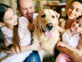 Why Is There a Need for Compassionate Pet Sitting? | Pet Sitting in Canberra