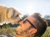 Socialising Your Dog for Boarding | Dog Boarding Sydney