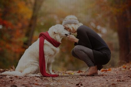 benefit of having a pet