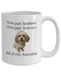 Maltese Shih Tzu